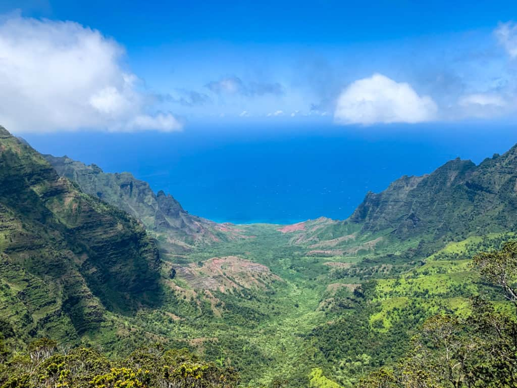 view of blue water past green canyon at top of Pihea Trail hike in Kauai